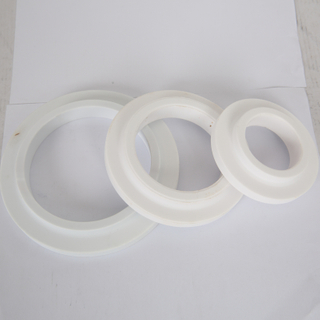 Ceramic Pump Seal
